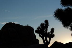 I miss climbing at Joshua Tree
