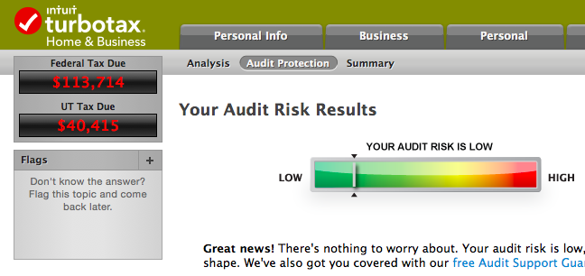 Turbotax audit risk
