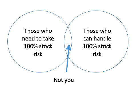 100% stock portfolio risk